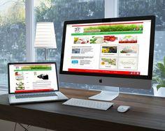 Creazione sito web.