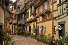 """Flowery and colorful Eguisheim - picturesque and concentric narrow streets lined with colorful half-timbered houses and rich floral decoration. When looking at a photo of Eguisheim taken from above, it is easy to be amazed by the shape of this small medieval city, which was built in three concentric circles around his castle. Eguisheim lies in the Haut-Rhin département of Alsace (France) a few kilometers south of Colmar. The Alsace """"Wine Route"""" passes the village. This city surrounded by…"""
