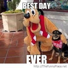 disney funny pics