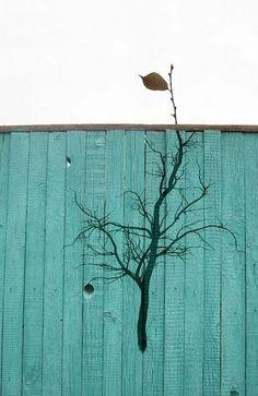 Pochoir street art - trouvez la créativité en 65 images