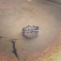 Pandora feather ring, size 52 Pandora sterling silver feather ring. Size 52. Cubic zirconias trace the feather design. Excellent condition. Pandora Jewelry Rings