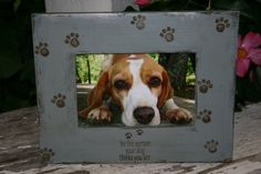 4 x 6 frames ~ pet frames ~ dog frames