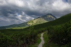 High Tatras scenery, view on the highest peak of Slovakia - Gerlach High Tatras, Pictures For Sale, Landscape Pictures, Beautiful Artwork, Paths, Fine Art America, Travel Destinations, My Photos, Fine Art Prints