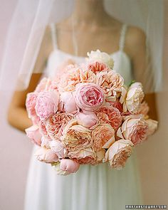 Luscious bouquet of pink cabbage roses.