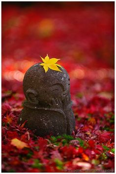 Autumn in children Jizo at Enko-ji Temple, Kyoto, Japan. The return of the little Jizo (Enko-ji temple 圓光寺)