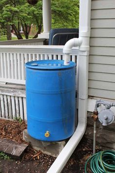 Rain Barrel and Diverter  May be useful someday when we have to pay for water :)