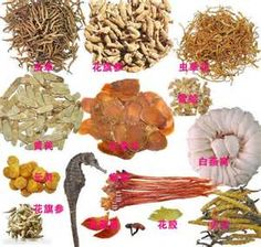 chinese medicine - Yahoo Image Search Results