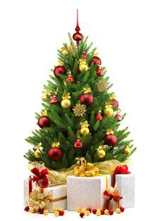 Found on Google from ridgetimes.co.za Christmas Wreaths, Christmas Tree, Holiday Decor, Google, Home Decor, Teal Christmas Tree, Decoration Home, Room Decor, Xmas Trees