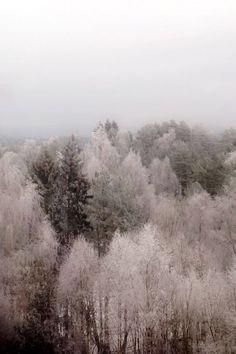 Snow, City, Nature, Outdoor, Outdoors, Naturaleza, Cities, Outdoor Games, Nature Illustration
