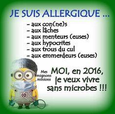 """Résultat de recherche d'images pour """"citation des minions pour 2016"""""""