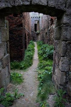 The Ruins of New Slains Castle on the Cliffs of Cruden Bay – Abandoned Playgrounds - Aberdeenshire, Scotland by Terry Marthe Suter