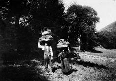 Levando os ourizos en cestos. A Ermida, A Pastoriza. Arquivo Ebeling nº 485.