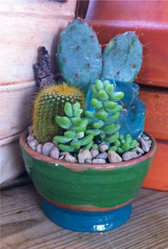 Great Color Handmade Pottery  Cactus Garden...Thanks Tiff <3