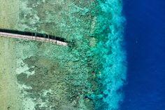 Faire de la plongée en Indonésie, c'est comme faire du ski à la montagne, c'est une évidence. Comment pourrait-il en être autrement dans un archipel qui s'étire nonchalamment sur des milliers de kilomètres de la ligne d'équateur. Avec bouteille ou simple masque et tuba, l'Indonésie offre un choix impressionnant. Située au cœur du triangle de corail, elle a parmi les plus belles plongées au monde. Un mélange pour tous les goûts, amateurs de gros, de coraux ou de macro, l'Indonésie a tout ce qu'il Galerie Photo, Abstract, Ski, Artwork, Simple, Nautical Background, Archipelago, Photo Galleries, Impressionism