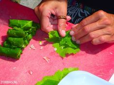 Cooking holidays on Crete: Cooking course on Crete & cooking workshop Greek cooking and Greek cooking holidays: A complete week cooking holidays on Crete Marshmallow Frosting, Cooking Courses, Greek Cooking, Crete Greece, Greek Recipes, Asparagus, Vegetables, Food, Marshmallows
