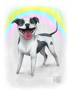 for love of pitbulls and rainbows.