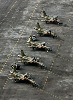 Northrop F-5E and F-5F Tiger II - Fuerza Aérea Mexicana (Mexican Air Force) 401 Squadron.
