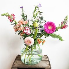 De bloemen van deze week! We gingen voor tinten variërend van abrikoos tot lila en roze. In de bos op de foto, formaat small, zie je onder andere de Germini Belfi. Ook grote zus Gerbera Terra Wink zit in de bos. Deze bloemen blijven lang mooi en doen het ook goed als ze alleen in een vaasje staan. Wat is jouw favoriet deze week? #flowersoftheweek #pink #weekend #flowers
