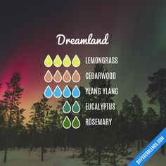 Dreamland - Essential Oil Diffuser Blend