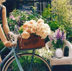 I desire to live single for awhile, near shops...pick up some fresh bread, flowers...and ride back on a beach bike...