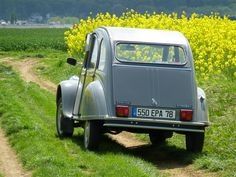 Citroen 2cv6 in Ile de France countryside  http://www.pinterest.com/adisavoiaditrev/
