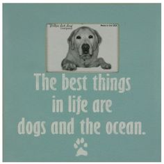 The best things in life are dogs & the ocean! Dogs & the Ocean