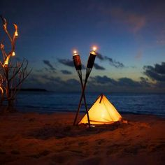 I would absolutely love to go camping on a beach somewhere. Just not a place where there are a bunch of creeps.