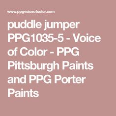 puddle jumper PPG1035-5 - Voice of Color - PPG Pittsburgh Paints and PPG Porter Paints