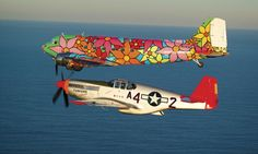 "Portraits of Hope ""Garden in Transit - Airborne"" DC-3 airplane - at Kitty Hawk, NC, Centennial Celebration of Flight, 2003; invited by NASA; www.portraitsofhope.org"