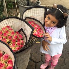 Martina with a variety called Malibu on our farm in Ecuador. These roses have just been cut and placed in water prior to being transported to post harvest where they are classified and packed.