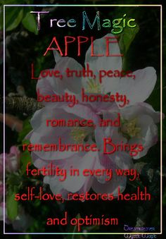 Apple - Love, truth, peace, beauty, honesty, romance, fertility and remembrance. Brings fertility in every way, self-love, restores health and optimism