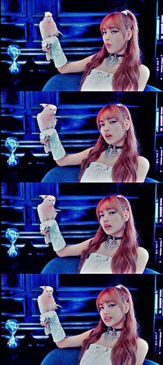 lalisa in your area Kpop Girl Groups, Korean Girl Groups, Kpop Girls, Yg Entertainment, Pink Performance, Rapper, Winner Ikon, Blackpink Members, Lisa Bp