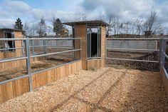 Accessories Feeding technology - Hau Horse Stalls, Indoor-stalls, Panels, Paddocks, Barn accessories Fütterungstechnik - Hau Horse Stalls, Indoor-stalls, Panels, Paddocks, Barn accessories