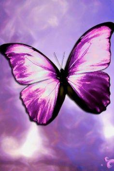 3d digital art butterflies & dragonflies | green butterfly wallpaper black butterfly wallpaper free butterfly ...