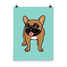 Black Mask Fawn French Bulldog is ready to play Photo paper poster