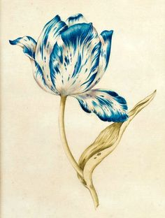 how would this lovely tulip look on my skin?