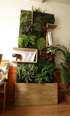 bookshelf planter concept, but incorportaing more timber panels / framed planters