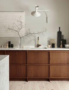 Rustic minimalistic kitchen in dark oak