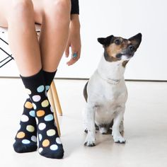 "Happy Socks (@happysocks) on Instagram: ""Do you go mutts for #HappySocks, too? 📷@patriciasemirphotography #HappinessEverywhere"""