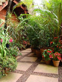 Grid pattern of gravel & stone paving slabs Unique Gardens, Small Gardens, Amazing Gardens, Outdoor Gardens, Gravel Garden, Garden Steps, Balcony Garden, Tropical Garden, Dream Garden