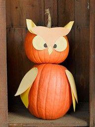 owl classroom theme - Google Search-cute idea for pumpkin patch next year.