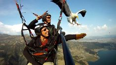 Parahawking in Nepal - Amazing!