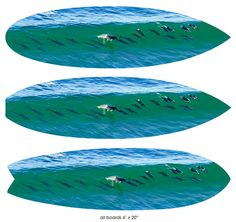 """""""21 Dolphins"""" 6ft. Surfboards 