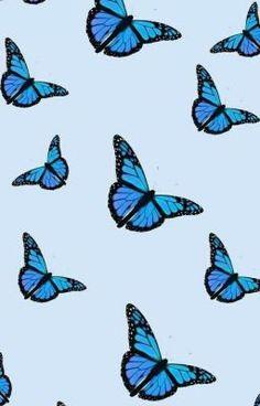 Cute Blue Wallpaper, Blue Butterfly Wallpaper, Wallpaper Awesome, Wallpaper Ideas, Best Iphone Wallpapers, Blue Wallpapers, Aesthetic Iphone Wallpaper, Aesthetic Wallpapers, Animal Print Shop