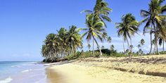 Direkt am Strand im Hotel Sosua by the Sea in Puerto Plata! Caribbean Resort, Caribbean Vacations, Punta Cana Hotels, Grace Bay Beach, Beaches In The World, Dominican Republic, Best Hotels, Luxury Hotels, Vacation Spots