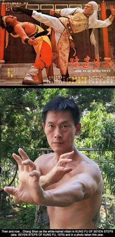 Kung Fu Cinema Legend Chang Shan Coming To The UK - Learn more about New Life Kung Fu at newlifekungfu.com