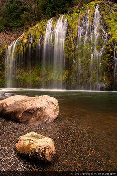 1000 images about sacramento river california on for Sacramento river fishing spots