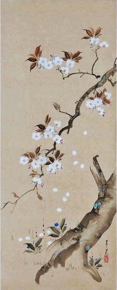 Suzuki Kiitsu, 19th Century 'Cherry Blossoms', Japanese Wall Panel Painting.