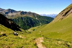 Das Astental, Mörtschach, Oberkärnten Carinthia, Wedding Locations, Eco Friendly, Mountains, Nature, Travel, National Forest, Pictures, Naturaleza