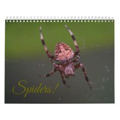 Spiders! Calendar - home gifts ideas decor special unique custom individual customized individualized